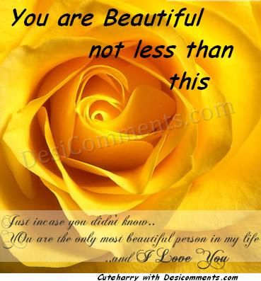 Beautiful Roses Wallpapers With Quotes You Are Beautiful Not Less Than This Flower Desicomments Com
