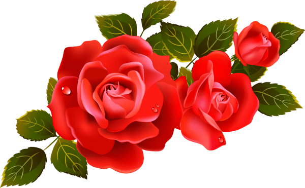 rose graphics