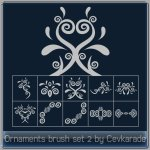 Ornaments Brush Set 2 by: Cevkarade