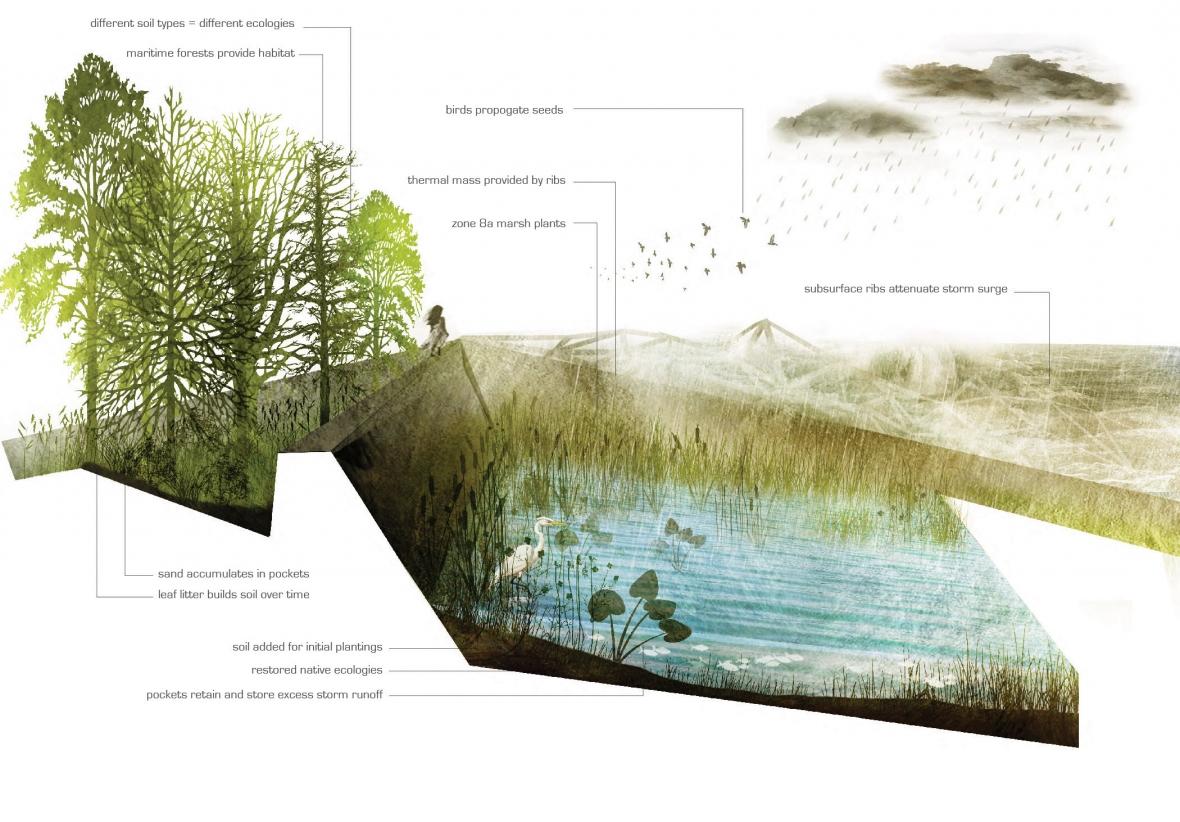 landscape architecture penndesign
