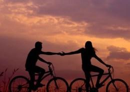 hochzeit trauringe paar fahrrad