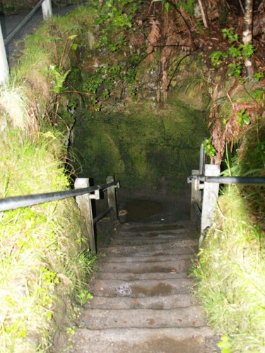 Stairs into Nāhuku, the Thurston Lava Tube, Hawaii Volcanoes National Park - The Underground World of Caves