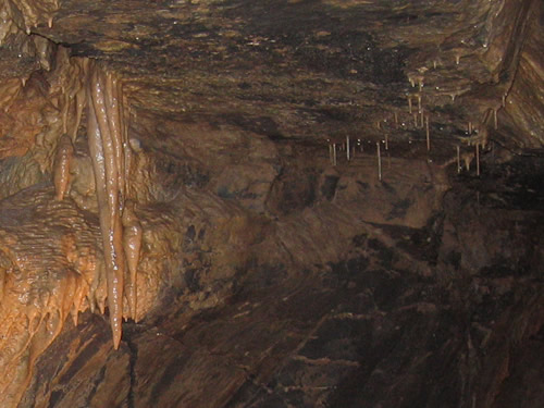 Aillwee Cave in Ireland - The Underground Burren, Ireland – The Underground World of Caves
