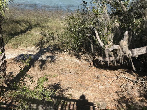 You can walk down below the overlook - Green's Shell Enclosure Heritage Preserve – Hilton Head Island
