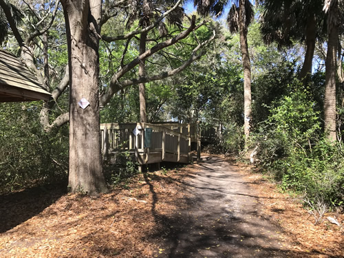 The path across the shell ring - Green's Shell Enclosure Heritage Preserve – Hilton Head Island