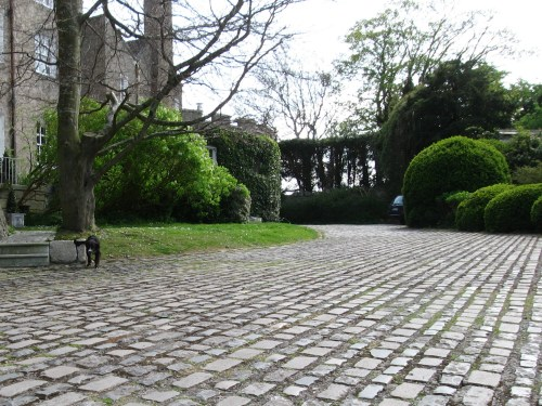 Across the Cobbled Drive toward the 18th century curved, castellated wall of Leixlip Castle.