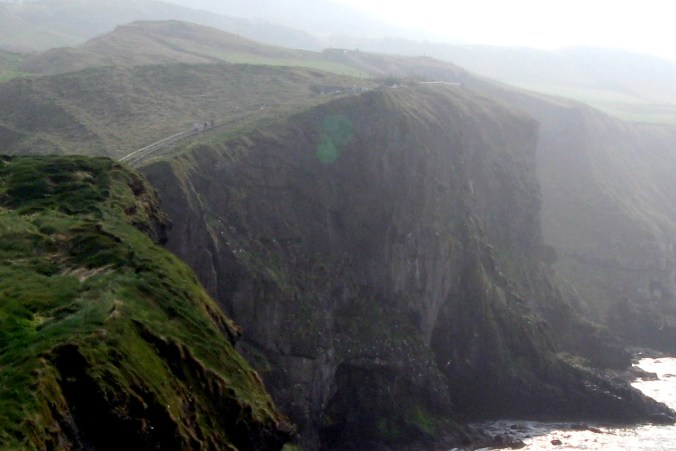 Walk along cliff to Carrick-a-Rede Rope Bridge is designated an Area of Special Scientific Interest (ASSI) for geology, flora and fauna.