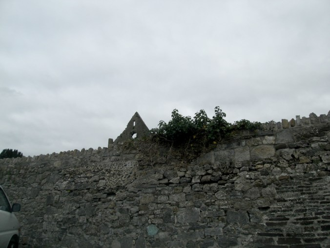 Intriguing ruins behind a wall, somewhere between Dublin and Dungarvan, north of Thomastown
