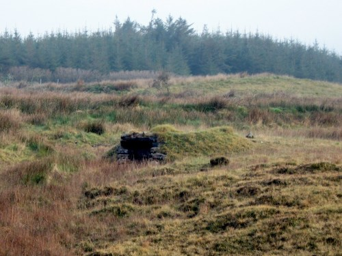 Mound? Tomb? Souterrain? Underground Chamber? Near Ardrahan, County Galway
