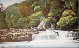Old Postcard of the Salmon Leap
