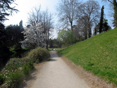 Walking Paths along the river with Early Spring Flowers at Birr Castle Gardens