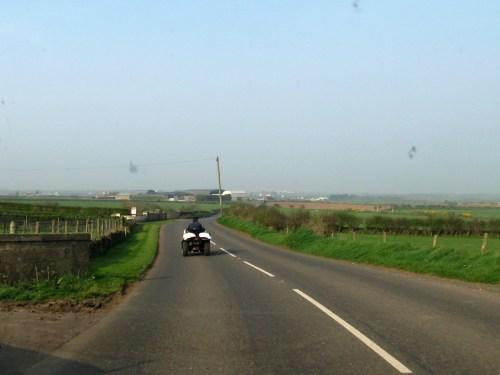 Shepherd on 4-wheeler with his dog riding along, Northern Ireland
