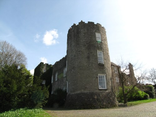 Leixlip Castle Round Tower