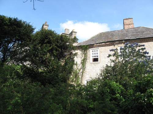 The back of Leixlip Castle; notice the roof slates.