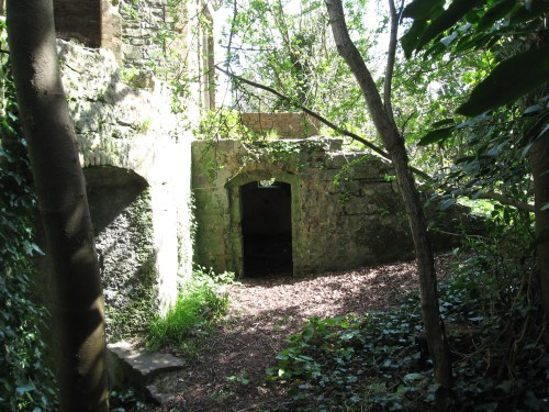 Space under the steps to Leixlip Castle Folly may have been used to store boating equipment.