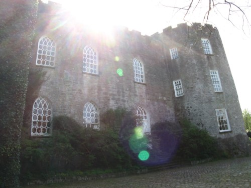 Front of Leixlip Castle. The steps lead to the Front Hall.