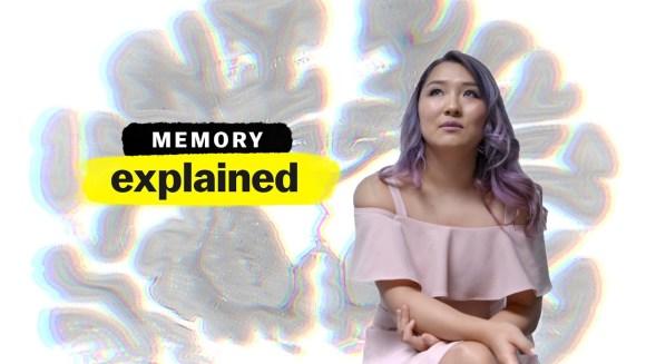 Memory, Explained