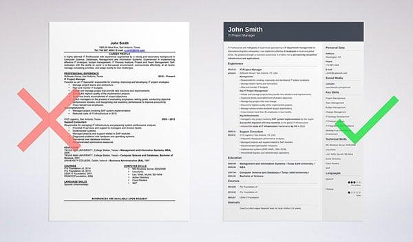 modern resume programmer
