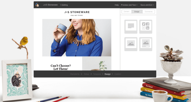 mailchimp Setting Up WordPress: 10 Best Plugins & Tools To Have From The Get-Go