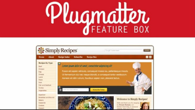 top-email-list-building-plugins-for-wordpress-plugmatter-optin-feature-box Top 9 Email List Building Plugins for WordPress