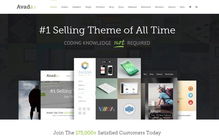 avada 7 Top Corporate / Business WordPress Themes + What Makes Them Great