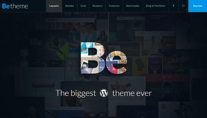 betheme 7 Top Corporate / Business WordPress Themes + What Makes Them Great