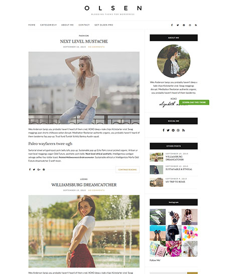 olsen-light-wordpres-theme 21+ Best Free Responsive WordPress Themes for 2017