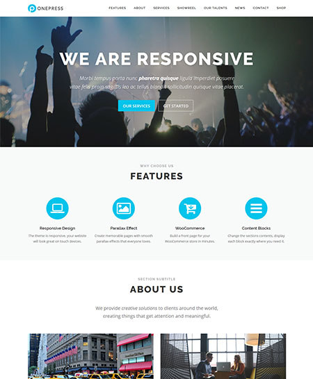 onepress-wordpress-theme 21+ Best Free Responsive WordPress Themes for 2017