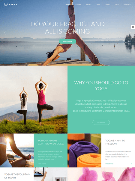 asana 22 of the best Yoga & Fitness WordPress Themes for 2017