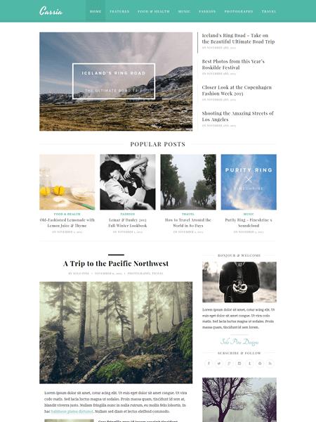 cassia 30 Newsworthy Magazine WordPress Themes for Blogs & Magazines