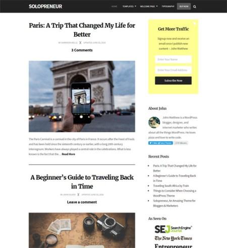 solopreneur 8 Best Clean WordPress Themes For Blogging & Personal Websites