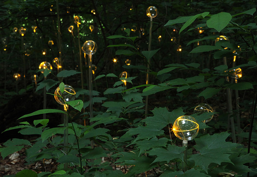 bruce munro light at longwood gardens