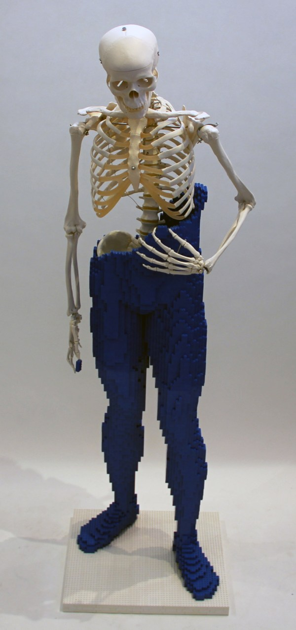 Nathan Sawaya . Bones Lego Sculpture