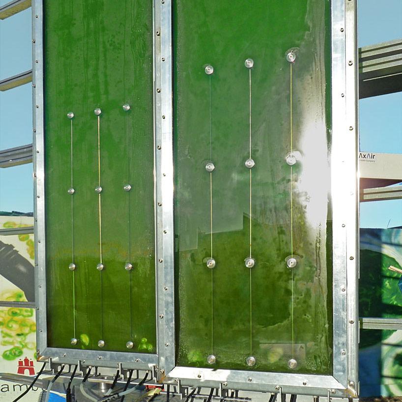 worlds first algae powered building by splitterwerk