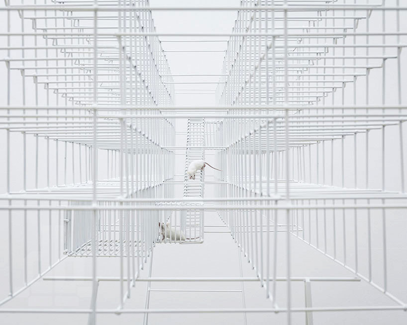 a reinterpreted prison as sculptural mouse cage by bureau A