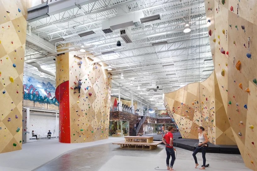brooklyn boulders coworking space features towering rock
