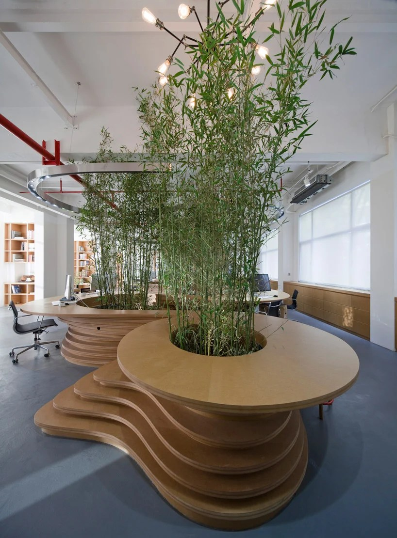 JW associates plants bamboo office interior in shanghai