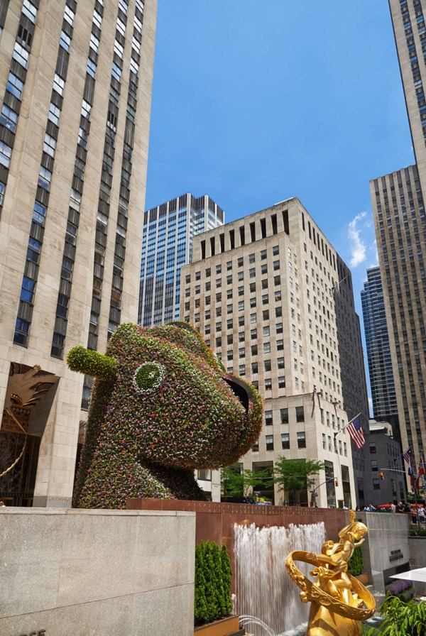 Jeff Koons Plants Split-rocker In Rockefeller Center