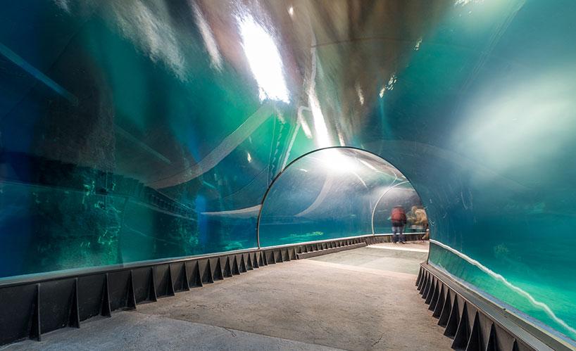 arc2 completes the massive afrykarium oceanarium in wroclaw