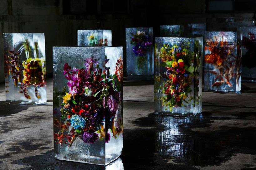 """Résultat de recherche d'images pour """"iced flowers makoto"""""""