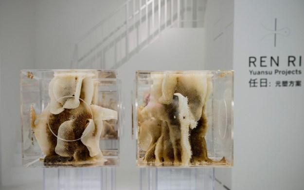 ren ri beeswax sculptures pearl lam galleries designboom