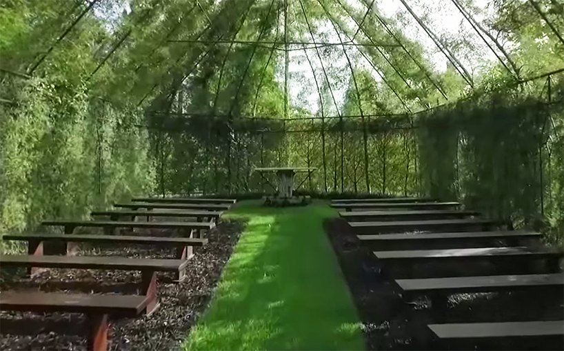 New Zealand Nature Lover Grows Living Tree Church And Lush
