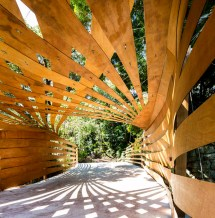 Enter Projects Design Organic Entrance Canopy In Sydney