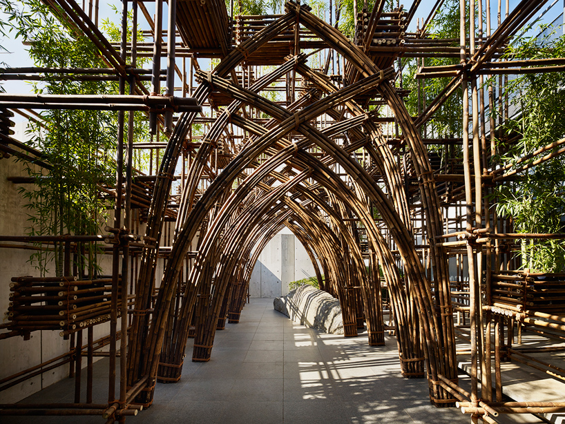 martial arts diagram kc lights wiring bamboo forest pavilion in tokyo by vo trong nghia architects