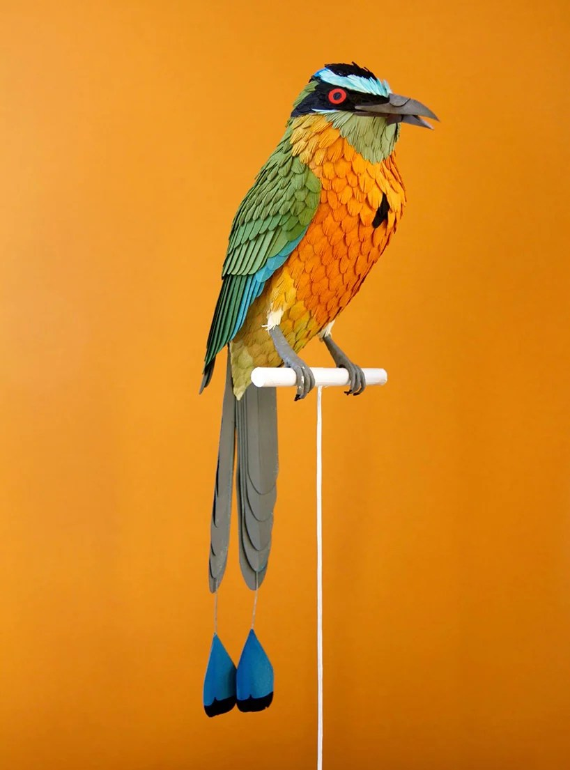 diana-beltran-herrera-paper-aviary-birds-designboom-05