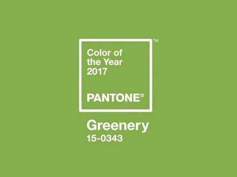 Image result for pantone color of the year 2017