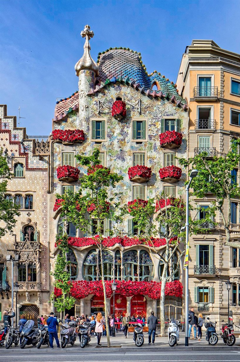 roses adorn antoni gauds casa batll for blood collection campaign