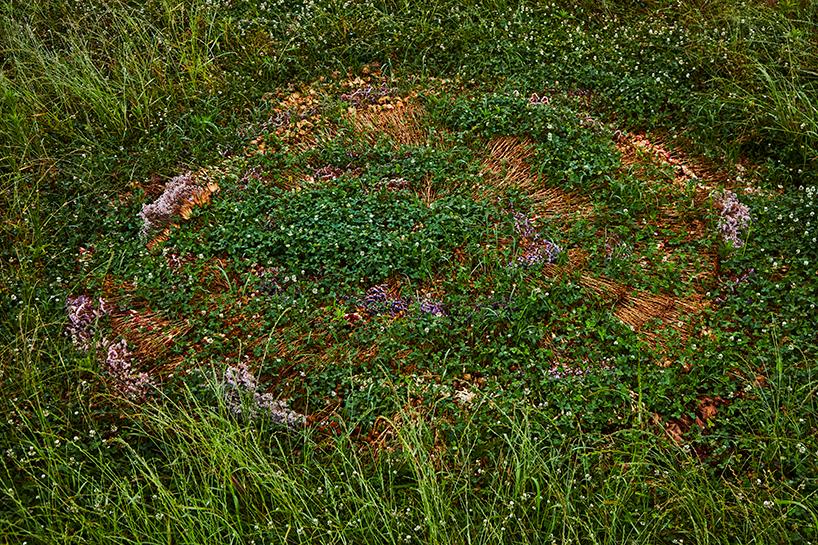 azuma makoto flower circle