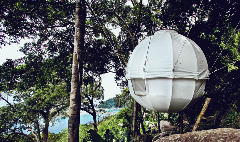 cocoon tree suspends campers above the ground in a private