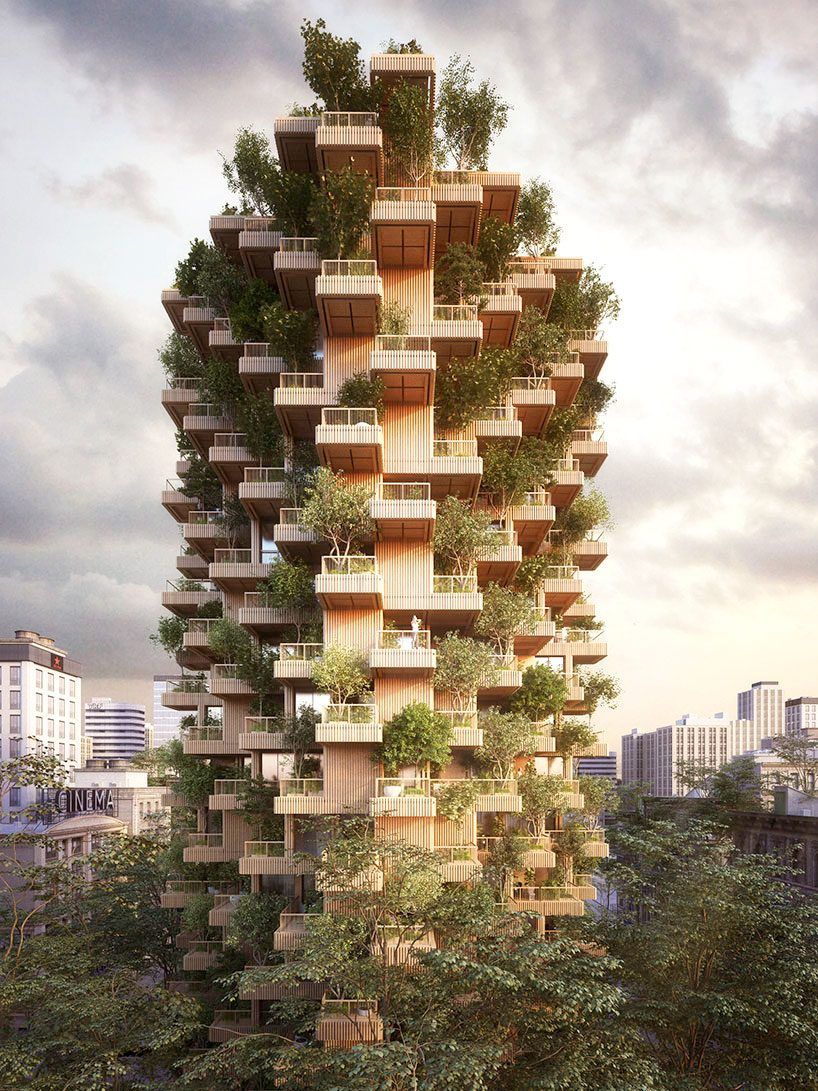 penda  tmber proposal for a timber tower bridges the gap